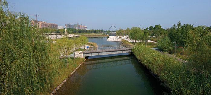 【商业设计与研究】滨水景观的生态之美——低造价时代的植物景观营造