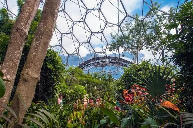 奥雅设计中标1400亩东方伊甸园项目