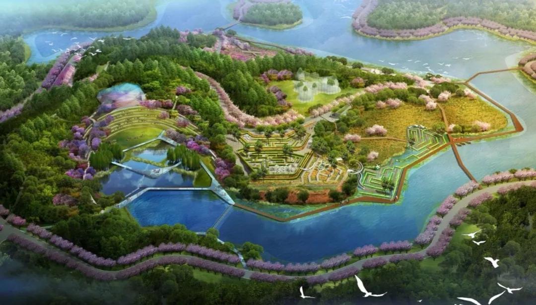 奥雅中标成都华侨城黄龙溪农创园花岛与茶园景观设计项目